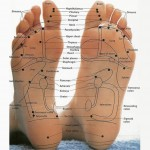 This very detoxifying session addresses the whole body through reflexes in the hands and feet.